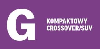 Kompaktowy crossover/SUV Auto Lider 2017