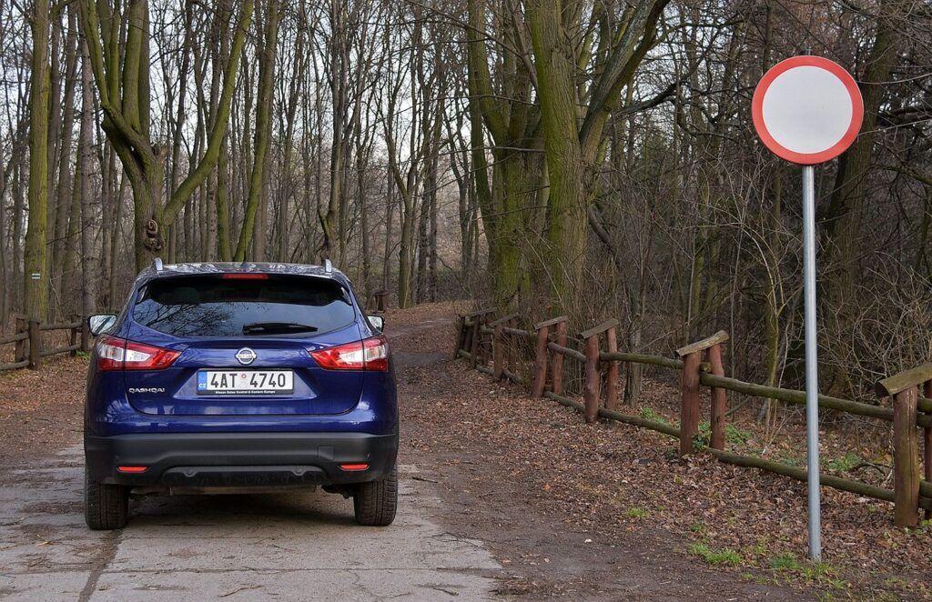 Wjazd samochodem do lasu (2)