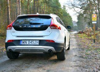 Czy autem można wjechać do lasu? Jaki mandat grozi za jazdę po lesie?