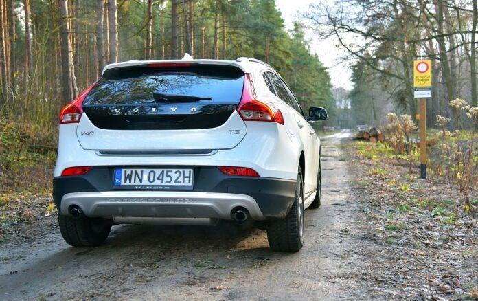 Wjazd samochodem do lasu