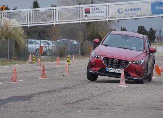 Test łosia | Najlepsze i najgorsze modele samochodów
