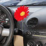 Volkswagen New Beetle - wazon