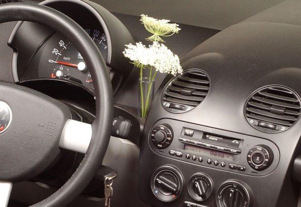 Volkswagen New Beetle - wazonik