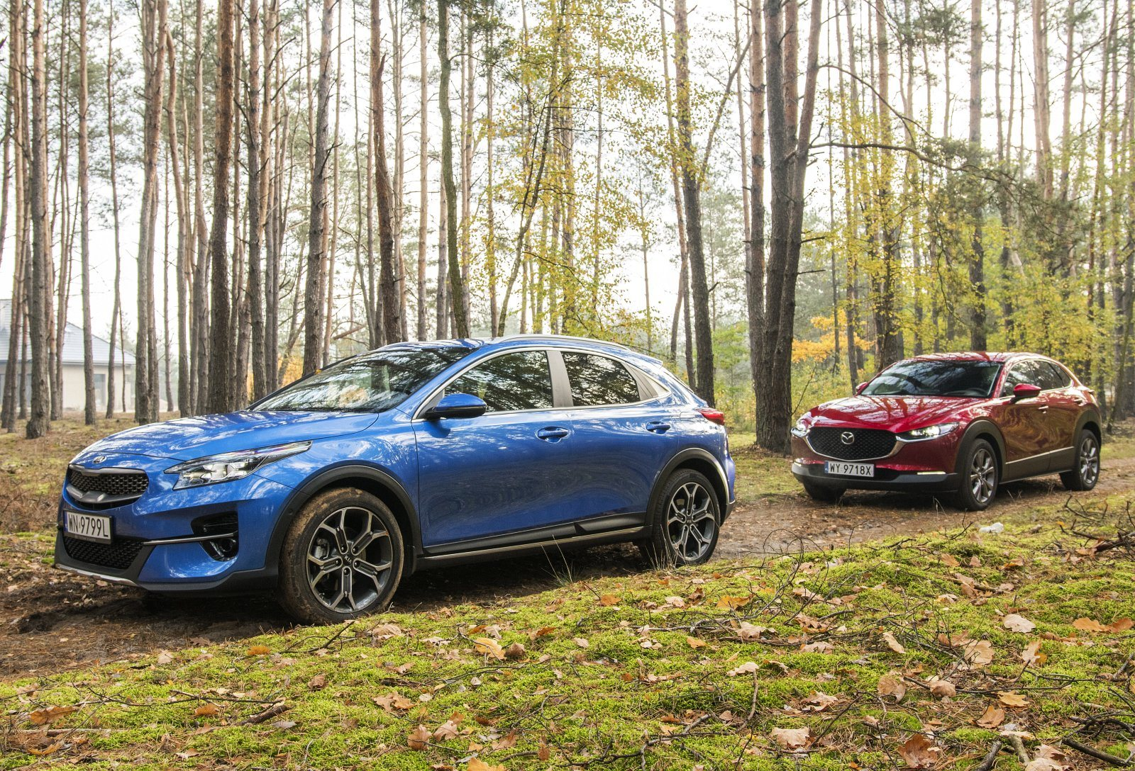 kia xceed mazda cx-30 test 2020 opinie