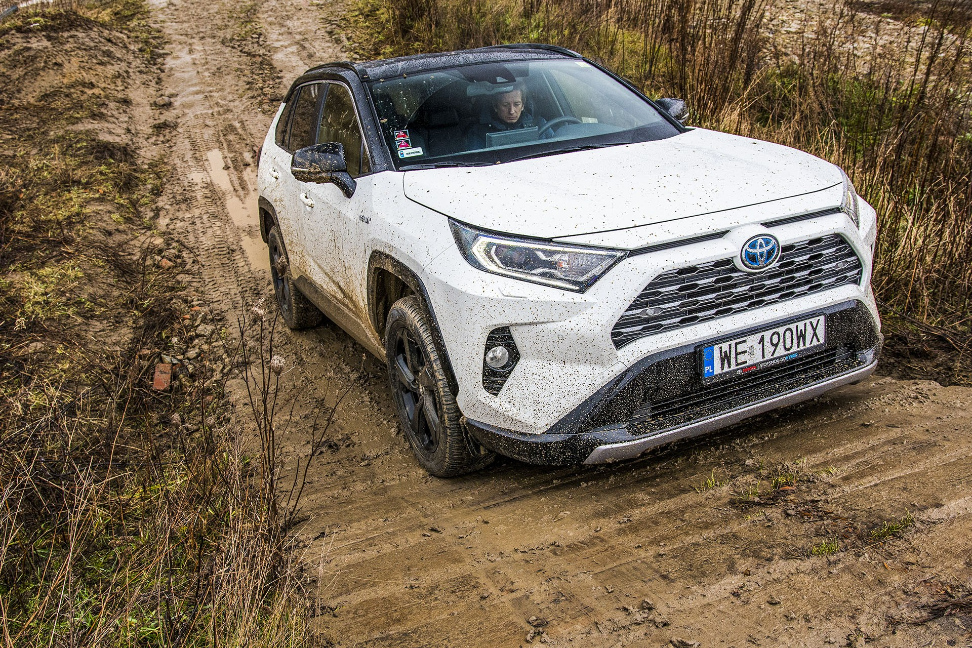 Toyota RAV4 Hybrid – przód