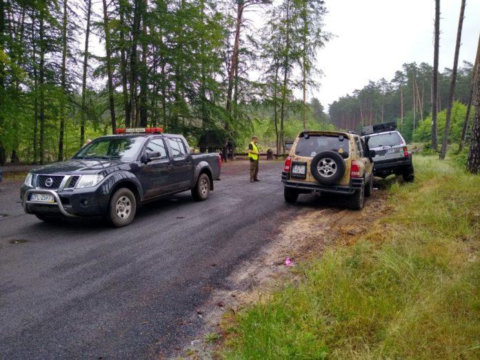 Nielegalna jazda w lesie