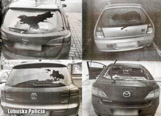 Zniszczyli 18 samochodów. Zobacz, jaki był powód